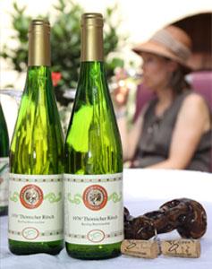 Weinprobe im Innenhof